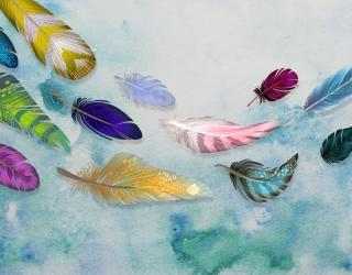 Фотообои Разноцветные воздушные перья 22079
